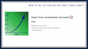 Forex Signals and Invest Review