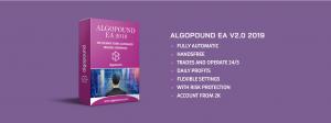 AlgoPound EA Vl.1 Review