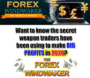 Forex WindWaker Review