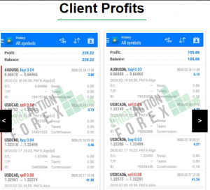 Price Action Forex Ltd Result