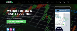 Price Action Forex Ltd Review