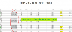 Forex Lush Results 1