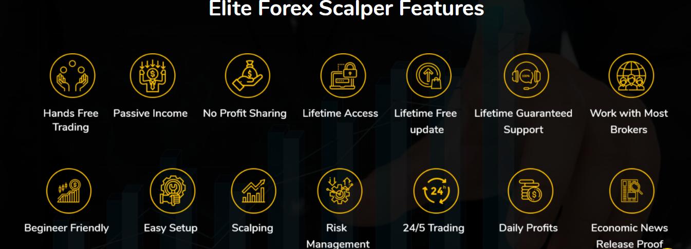 Elite Forex Scalper Review
